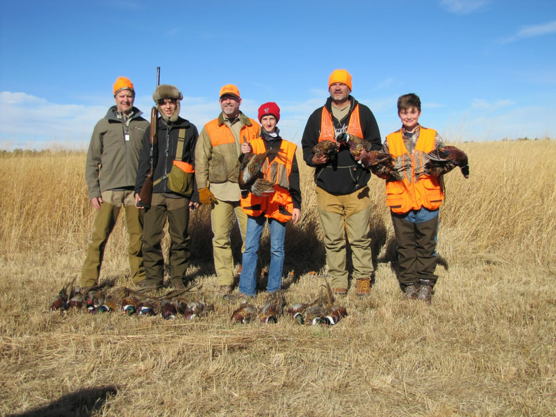 midwest pheasant hunting